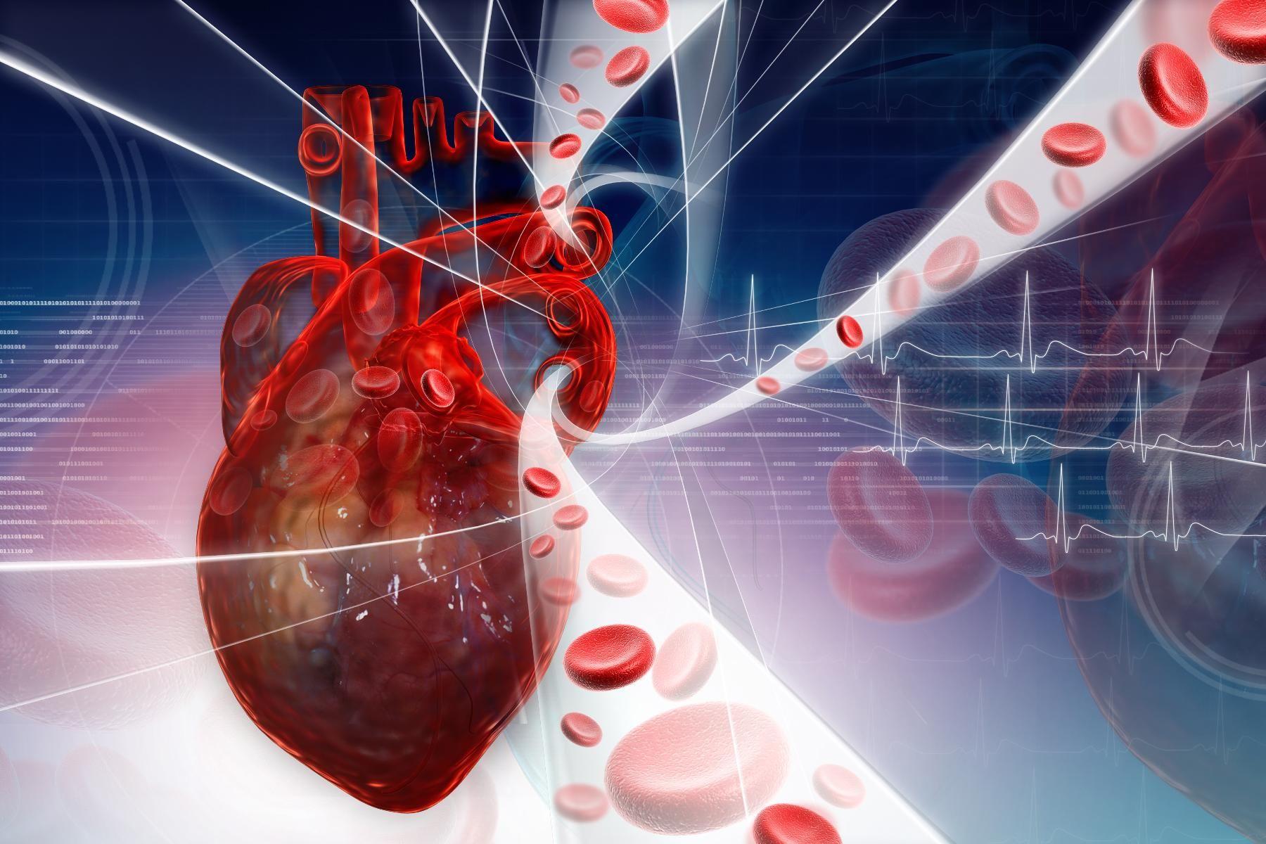 Виды сердечно-сосудистых заболеваний