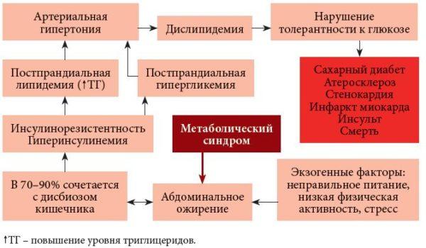 метаболический сердечно-сосудистый синдром