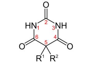 Биохимические особенности и фармакодинамика снотворных и транквилизаторов